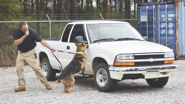 Escambia County Sheriff's Deputy Danny Lambert calls out to Ajax as the dog searches vehicles during a drug dog certification exercise held Wednesday, March 10, in Atmore.