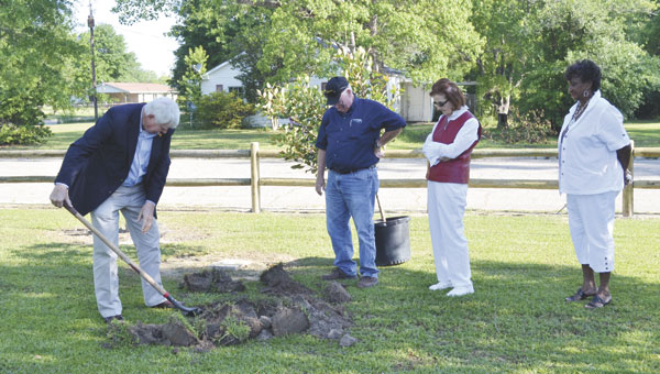 Atmore Mayor Jim Staff helps to dig the hole for a tree that was planted at A.C. Moore Elementary School on Friday. Looking on are Ed Brown, Juanita Smith and Gertha Adams.